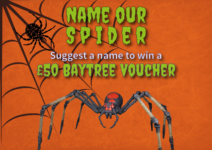 Name our spider to win a £50 Baytree Voucher